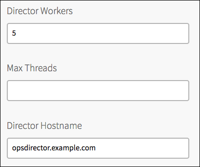 Three text fields labeled 'Director Workers', 'Max Threads', and 'Director Hostname'. The Director Workers field contains the text '5'. The Director Hostname field contains the text 'opsdirector.example.com'.